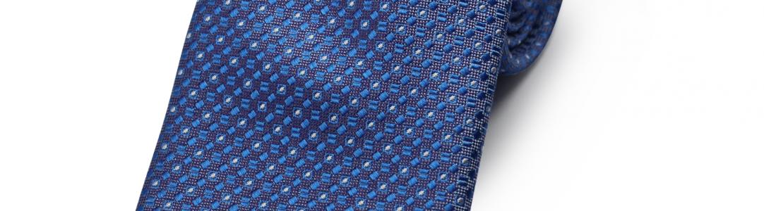 1748 COLOR 3 BLUE ALLIUM